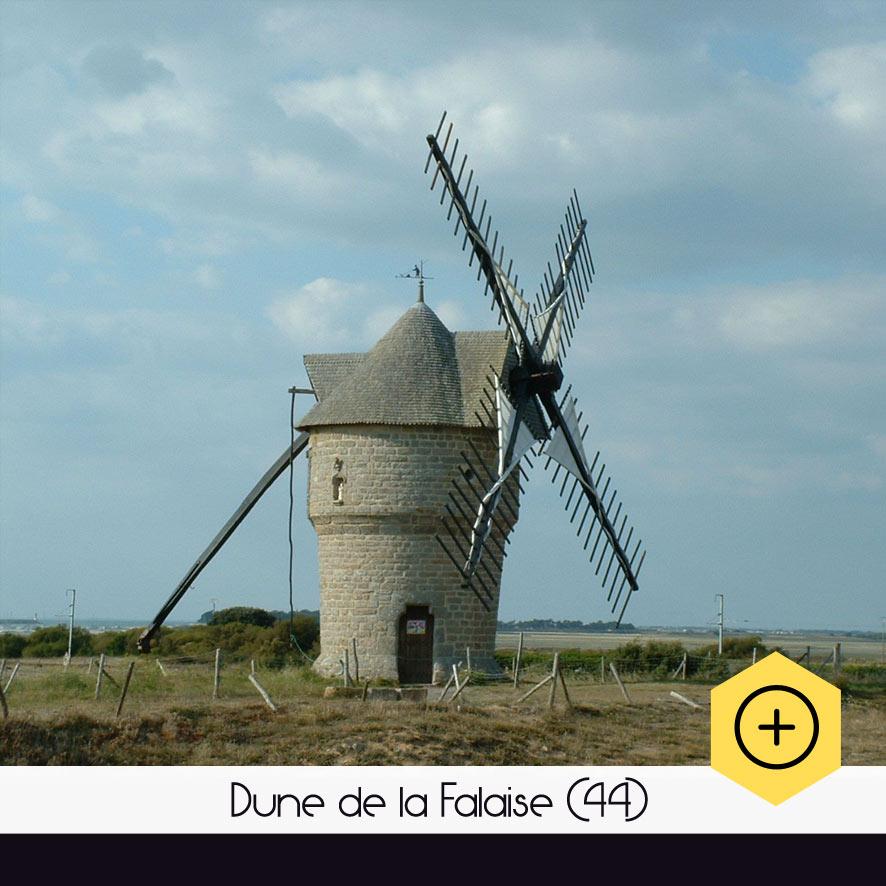 Dune de la Falaise